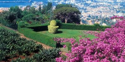 Madeira och Azorerna
